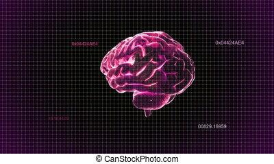 timecode, tourner, cerveau, rouges