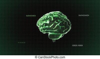 timecode., tourner, cerveau, vert