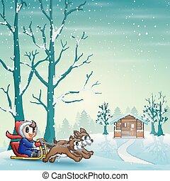 tiré, neige, équitation, traîneau, deux, chiens, dessin animé, garçon