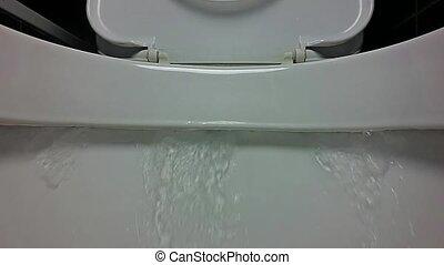 toilette, gros plan, lent, agrafe, motion., vidéo, purger, hd, vue