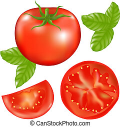 tomate, basilic, feuilles, tranches