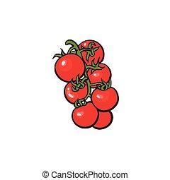 tomates mûres, vigne, illustration, vecteur, tas