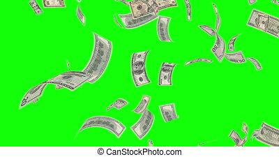 tomber, nous, différent, billets banque, vert, écran