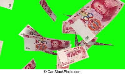 tomber, yuan, greenscreen), (loop