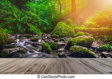 tonalité, ruisseau, bois, vendange, sur, rochers, courant, forêt, walkway., moussu