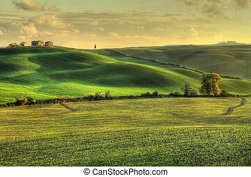 toscan, paysage, (hdr)