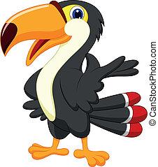 toucan, dessin animé, mignon, présentation