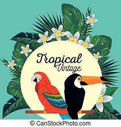 toucan, fleurs, animaux, perroquet, étiquette