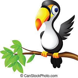 toucan, oiseau, dessin animé