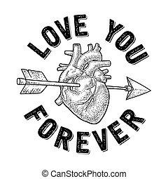 toujours, heart., transpercé, flèche, amour, vous, lettering.