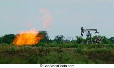 tour forage pétrole, nature