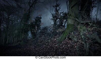 tourbillons, sentier, orage, autour de, feuilles, pays boisé