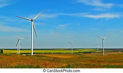 tourner, champ, turbines, vent