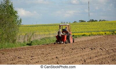 tracteur, champ, ferme, petit
