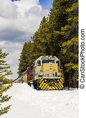 train, hiver, désert