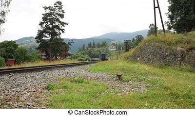 train passager, viaduc, promenades, montagnes