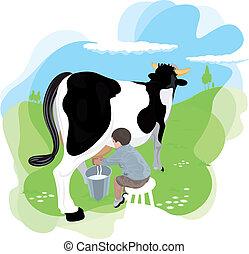 traite, garçon, vache