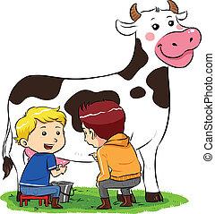 traite, vache