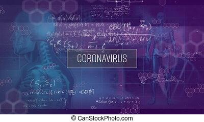 traitement, corps, arrière-plan., données, animation, sur, humain, 3d, mot, coronavirus, modèles