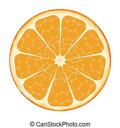 tranche orange, art, vecteur