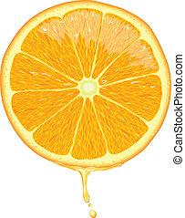 tranche orange, -, vecteur