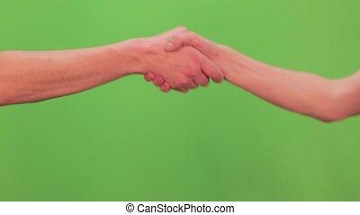 transmis, gesture., secousse, chromakey, hommes, poignée main, handshaking., mains, deux mains, chromakey.