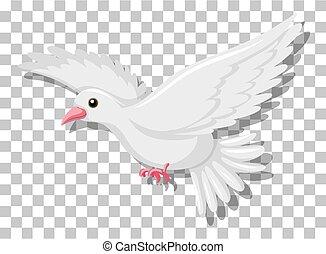 transparent, voler, fond, isolé, pigeon, blanc