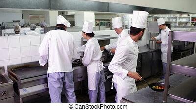 travail, cuisine, chefs, occupé