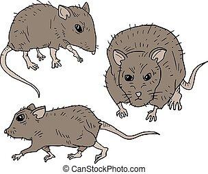trois, mouses