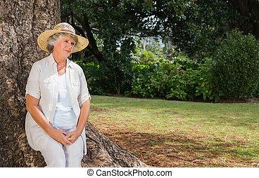 tronc arbre, retiré, pensif, séance femme