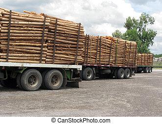 troncs, camions