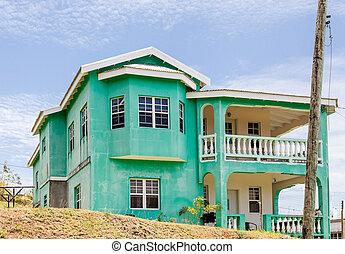 tropiques, plâtre, vieux, vert, maison