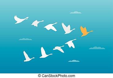 troupeau, concept, oiseaux, direction