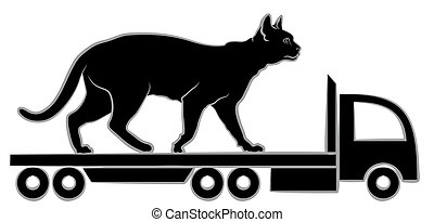 truck., chat noir