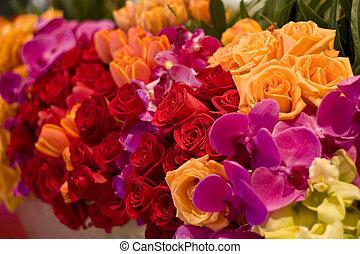 tulipes, fleurs, arrangement, roses, assorti