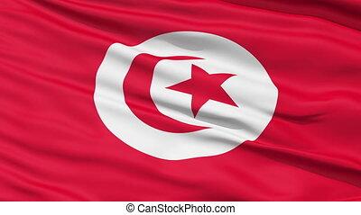 tunisie, réaliste, drapeau, vent