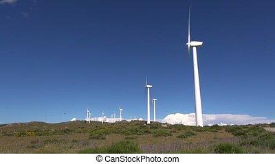 turbines, pré, blanc vert