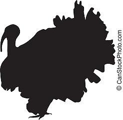 turquie, silhouette