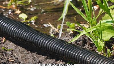 tuyau jardin, fuite, eau