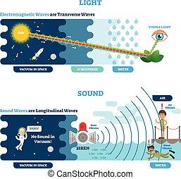 type, diagram., longitudinal, scientifique, sonique, illustration, vague, principle., visuel, vecteur, perception, transversal