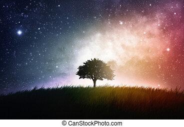 unique, arbre, fond, espace