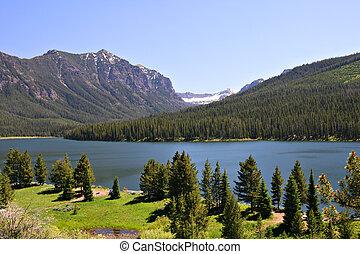 usa, national, lac, highlite, forêt, montana, bozeman, gallatin