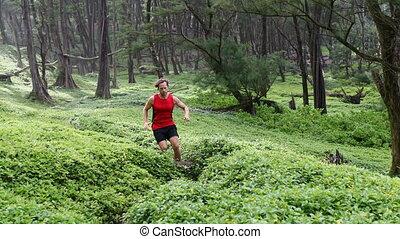 usines, courant, forêt, déterminé, amidst, jogging, athlète