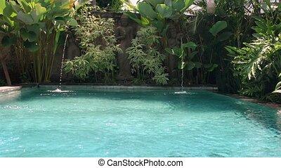 usines, extérieur, statues, ensoleillé, exotique, fontaine, fond, piscine, natation