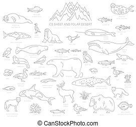 usines, polaire, oiseaux, biome., désert, simple, écosystème, fish, map., animaux, glace, style., infographic, conception, feuille, mondiale, ligne, terrestre, arctique