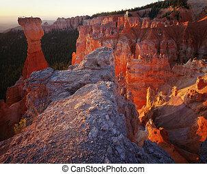 utah, bryce canyon, tours, national, levers de soleil, parc
