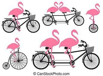 vélo, ensemble, vecteur, flamant rose
