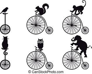 vélo, vecteur, animaux, retro
