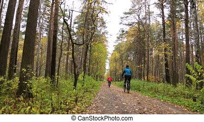 vélos, gens, équitation, parc, automne