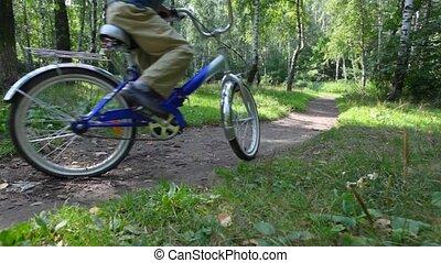vélos, promenades, fils, parc, mère